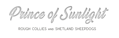 banner12 szöveg4.png
