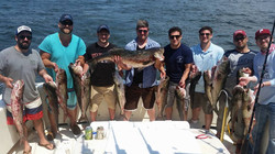 stripers4