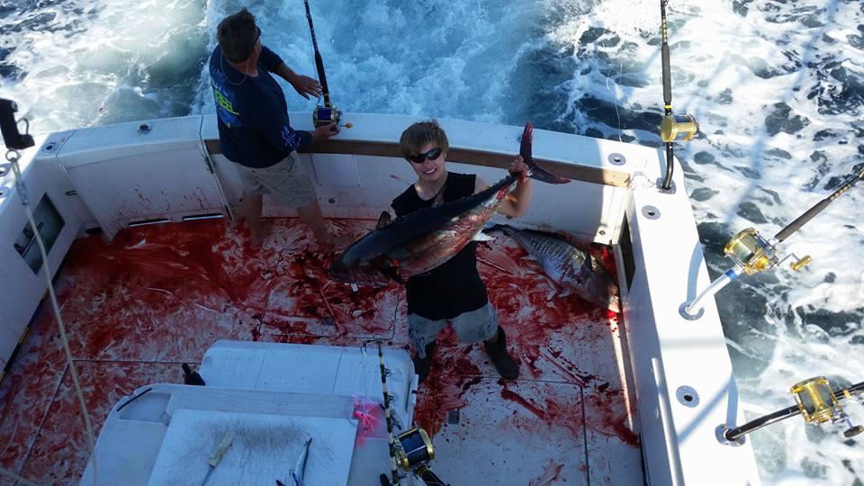 qd bloody tuna 6.30.16