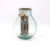 Aran Terrarium Gift Set