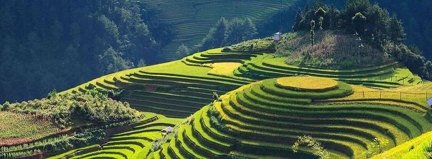 vietnam-visa-application-requirements.jp