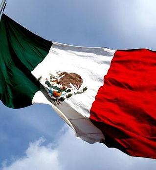 bandera-mexico-medium.jpg
