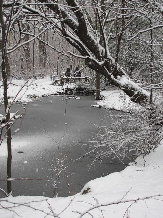 Azalea Pond 2 large.jpg