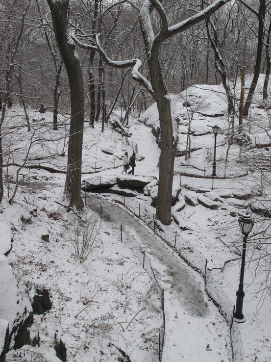From the Ramble Arch in winter.