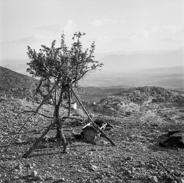 On the slopes of Mt. Prophet Ilias