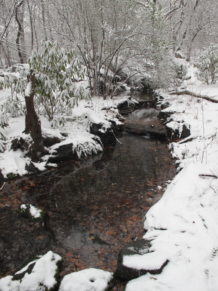 The headwaters of the Gill in winter.