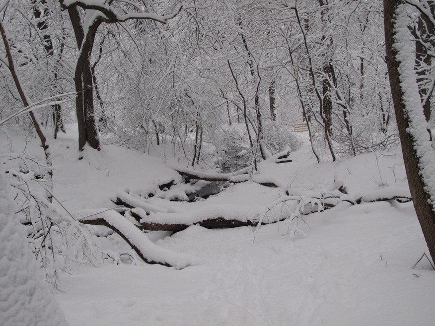 The Gill in Winter.