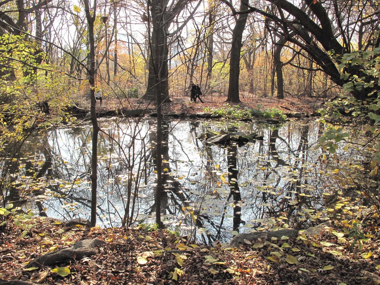 Azalea Pond.JPG