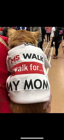 MS Walk Dog.jpg