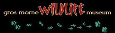 wildlife-museum_20.jpg