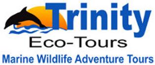 web-logo4.jpg