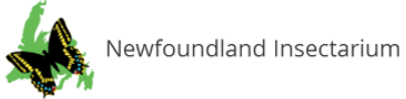 logo-insectarium-type-80.png