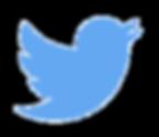 Twitter - Blue River Medi