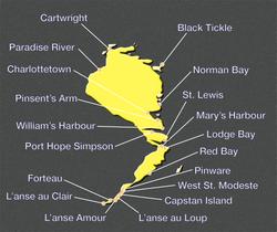 Southern Labrador