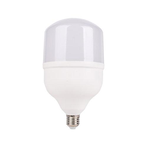 LPD HP LED 20W BIV BC