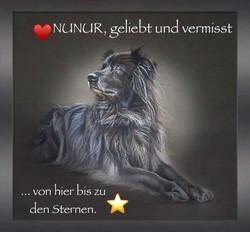 Nunur