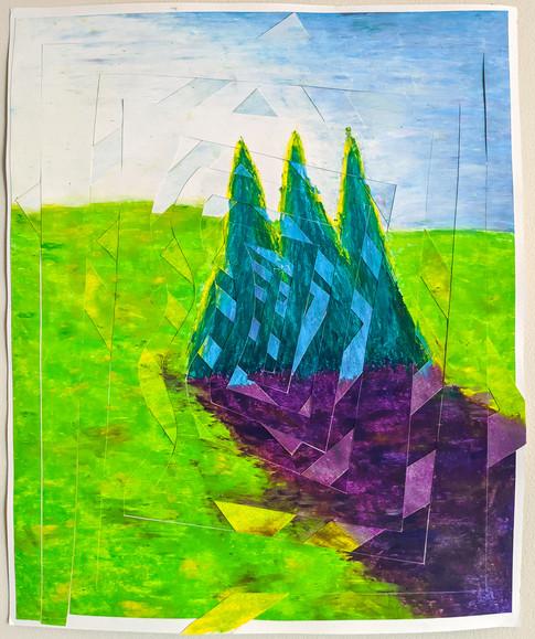 Blue Spruce 4