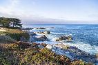 Monterey-Bay (1).jpg