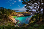 Point-Lobos-State-Park-Hike.jpg