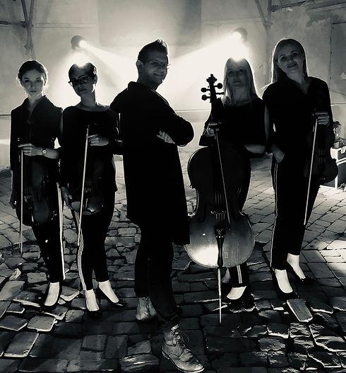 VOCART 4 Strings - Foto - 03.JPG