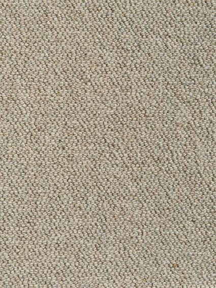 Gibraltar-B10023 Wheat