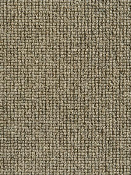 Ordina-131 Wheat