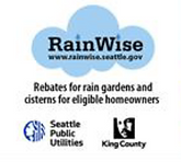 rainwise logo plus.png