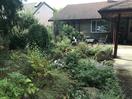 front yard rain garden and patio