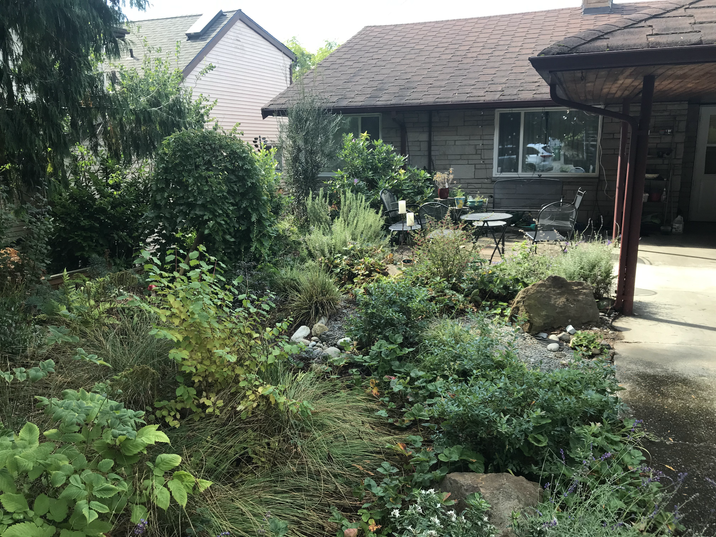 front yard rain garden and patio