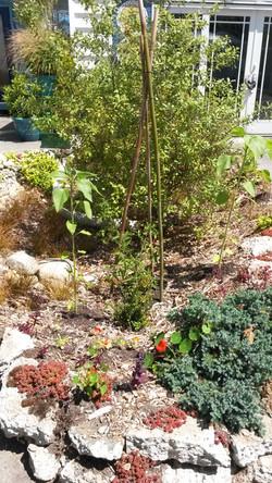 recycled concrete garden