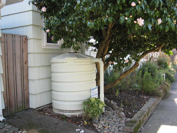 420g cistern