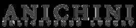 ANICHINI_logo_transp_black.png