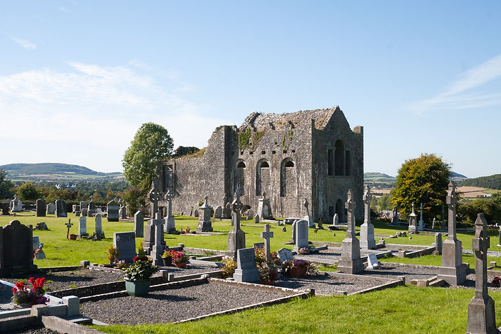 Stradbally_Oughaval_Church_SE_2010_09_02