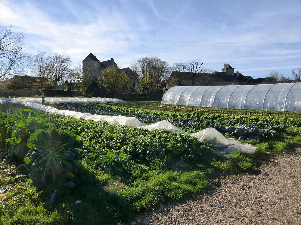 Les jardins de la cardère