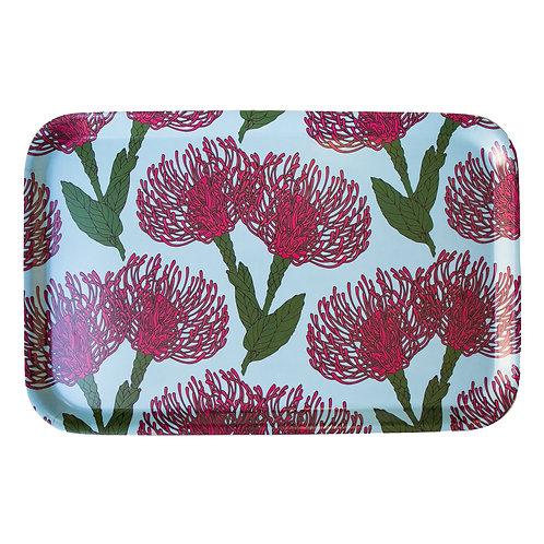 Pin Cushion Protea (pink) Medium Tray