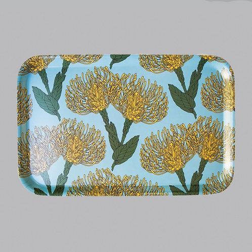 Pin Cushion Protea (yellow) Medium  Tray