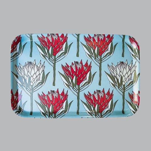 King Protea (Red) Medium Tray