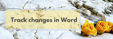 Track changes in Word.png