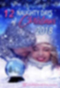 12 Naughty Days of Christmas.jpg