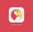 RE---Broke-Parrot-Felix--2nd-Concept--X-