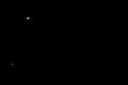 TAM-Logo-Black.png