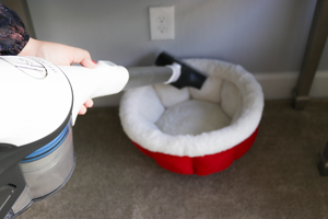Holiday Cleaning with Hoover + Cleaning Checklist + Organization Tips + Pet Cleaning Tips