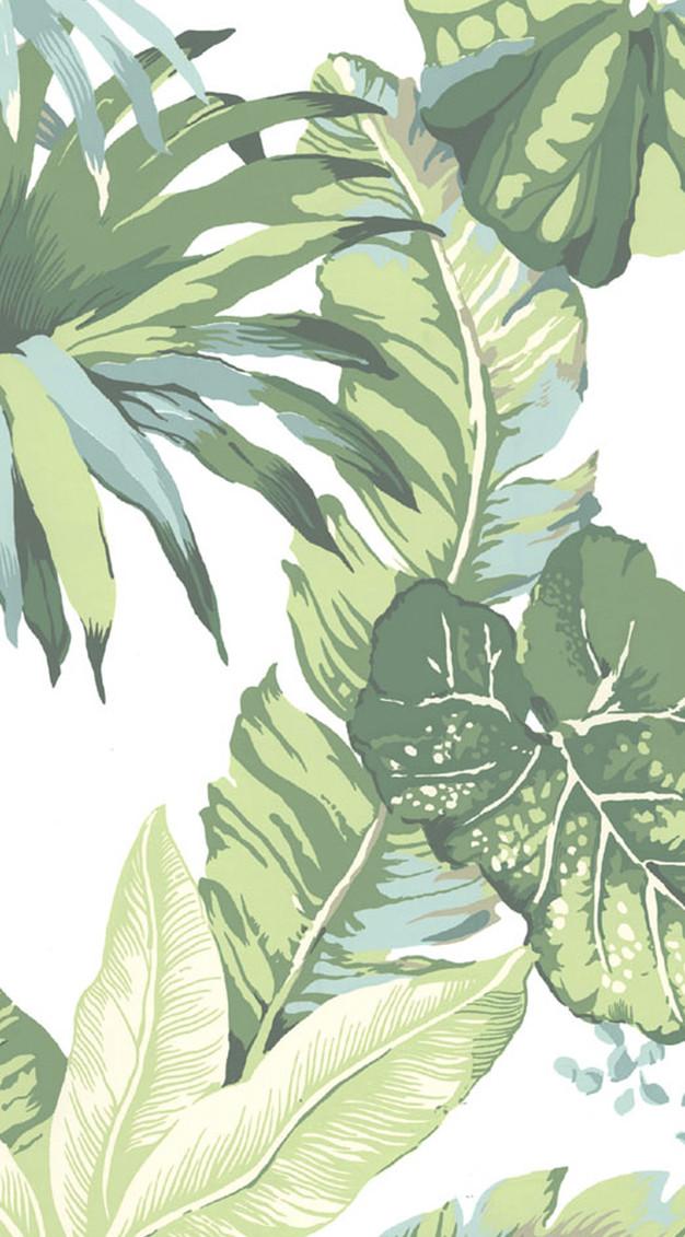 Banana Amp Summer Leaf Iphone Wallpapers