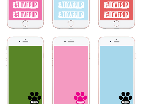 Spread Kindness with #LovePup (Free Phone Backgrounds)