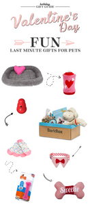 2018 Last Minute Valentine's Day Gifts for the Special Gal, Guy, and Pet in Your Life - Valentine's Day Gift Guide