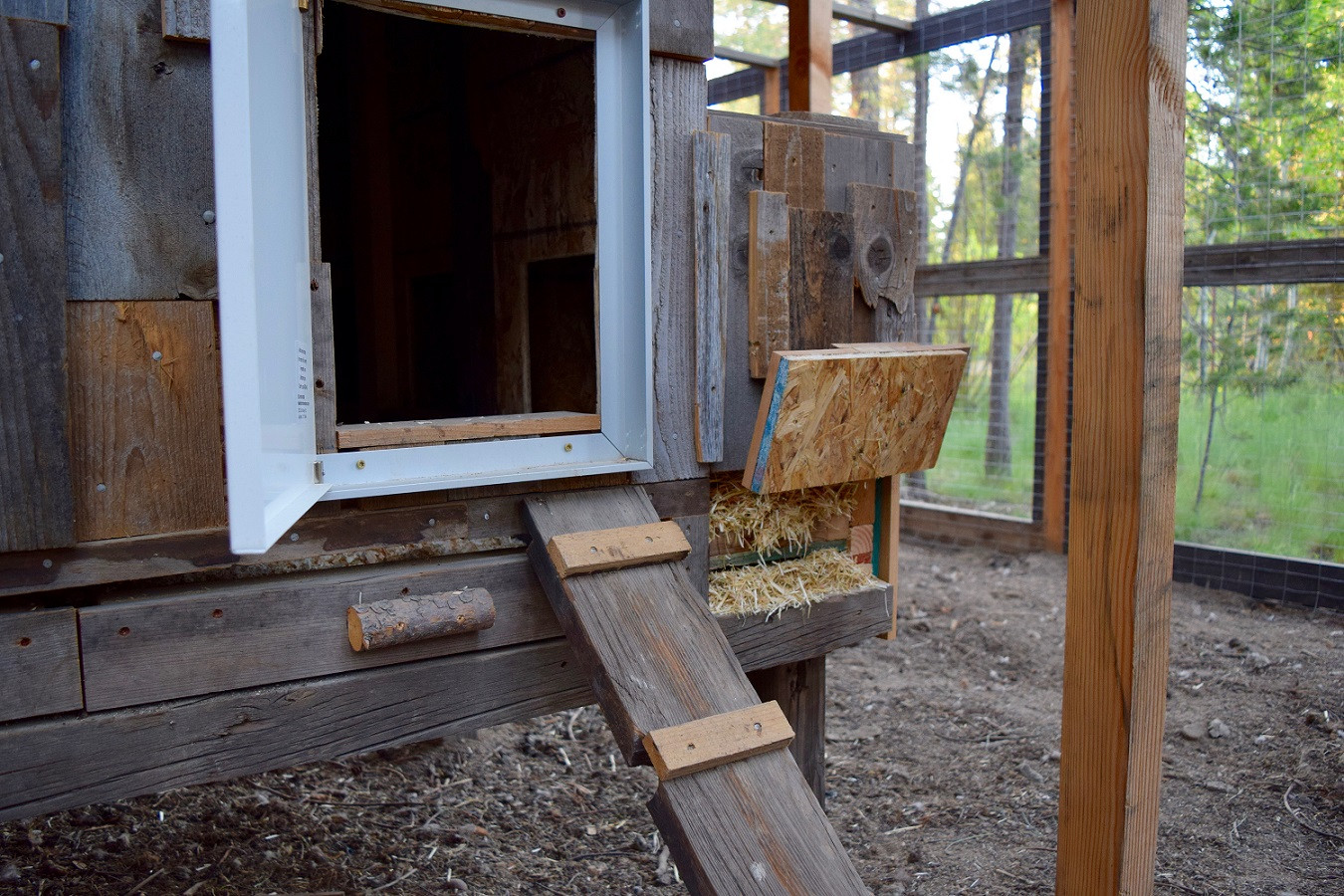 Hen house door & ladder