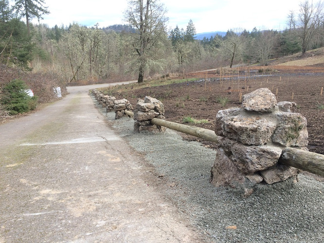 Basalt Column Fencing