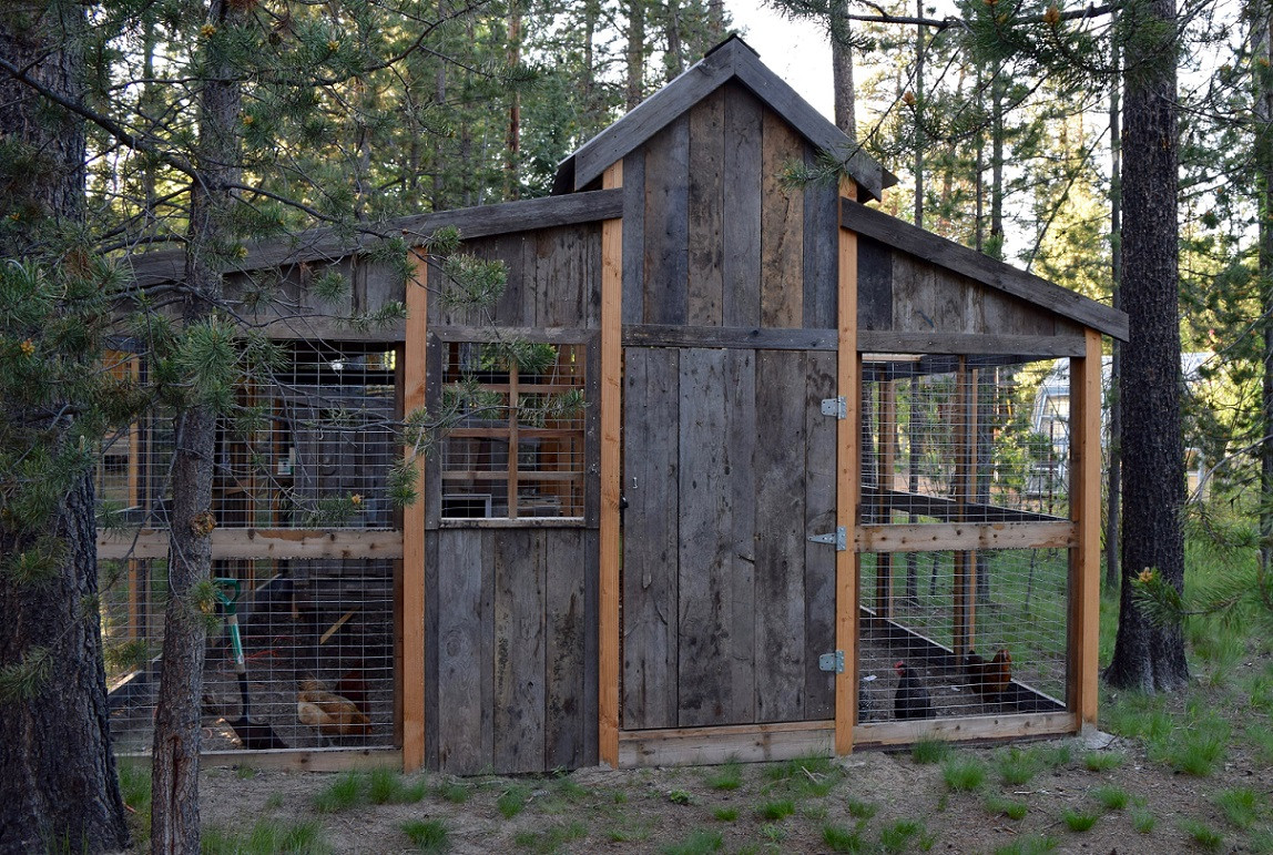 Full chicken coop exterior