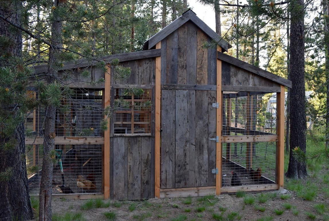 Full chicken coop exterior