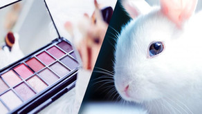 For Cruelty-free Cosmetic Brands: How to Bypass China's Mandatory Animal Testing?